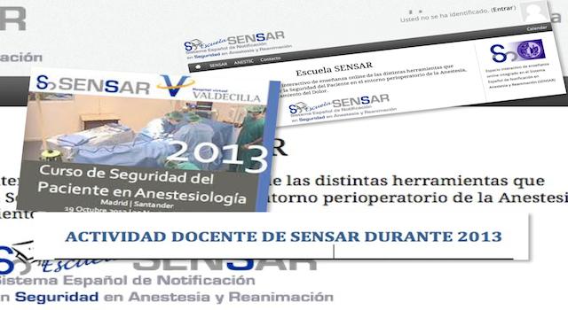 Boletín de Actualización SENSAR Febrero 2014. Actividad Docente 2013